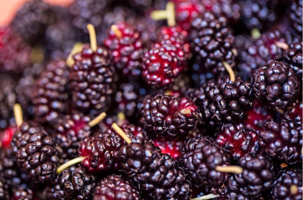 Meyve ve sebzeler hangi vitaminleri içeriyor? (Meyve ve sebzelerin besin değerleri) - 6