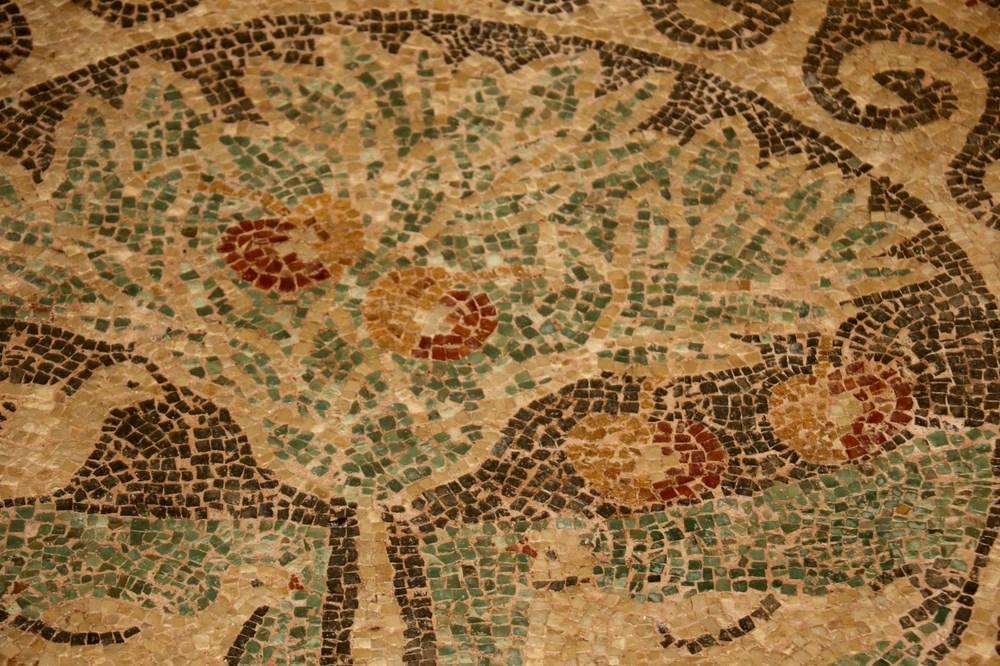 1800 yıllık elma mozaiği sergilenmeye başladı - 3