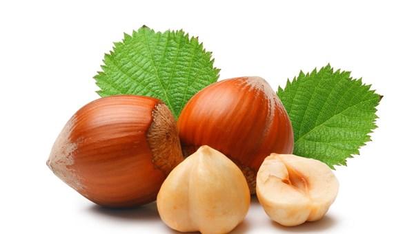 Antioksidan yararı için fındık kavrulmadan tüketilmeli!