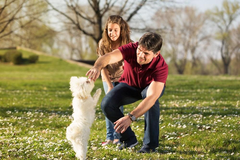 Köpekler doğdukları andan itibaren insanları anlayabiliyor - 2