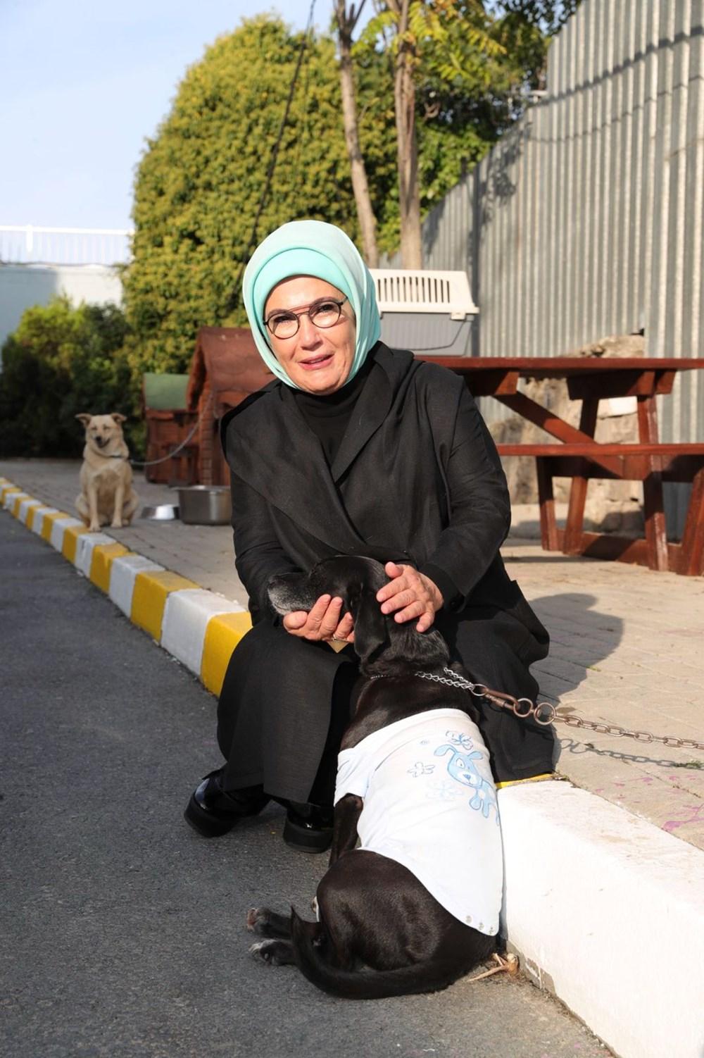 Emine Erdoğan, engelli köpek 'Leblebi'yi sahiplendi - 5