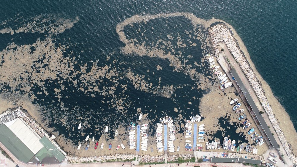 Marmara Denizi'nden toplanan müsilaja Bursa Teknik Üniversitesi talip - 16