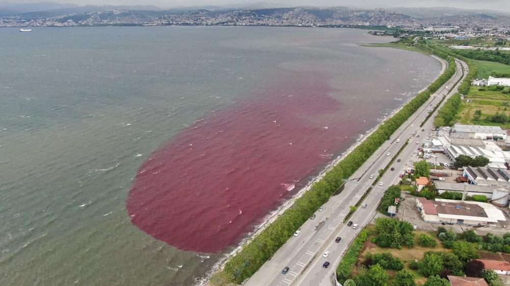 Kocaeli'de Kilez Deresi'ni atık su ile kırmızıya boyayan firmaya ceza - 13