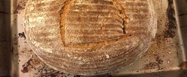 Seamus Blackley 4 bin 500 yıllık maya ile ekmek yaptı