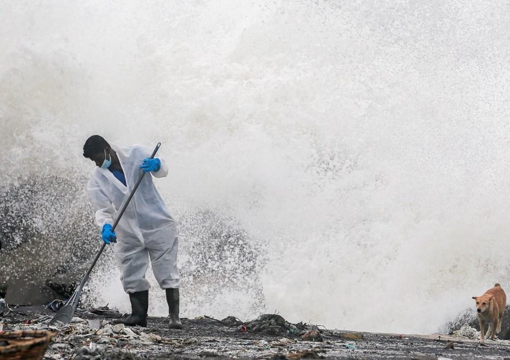 Yüzyılın en kötü çevre felaketlerinden: Onlarca yunus, balina ve kaplumbağa kıyıya vurdu - 9
