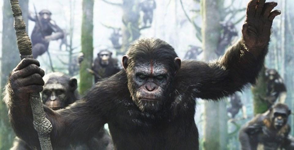 Maymunların beyinlerini geliştirmek için yapılan deneyler ve sonunda maymunların insanlar üzerinde üstünlük kurmak için açtıkları savaş... İlki 2011, ikincisi de 2014'te gösterime giren Maymunlar Cehennemi fiminden...