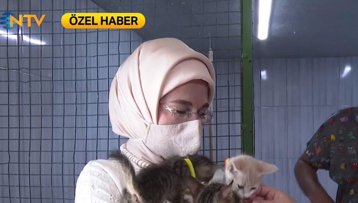 Emine Erdoğan'dan hayvanseverlere mesaj
