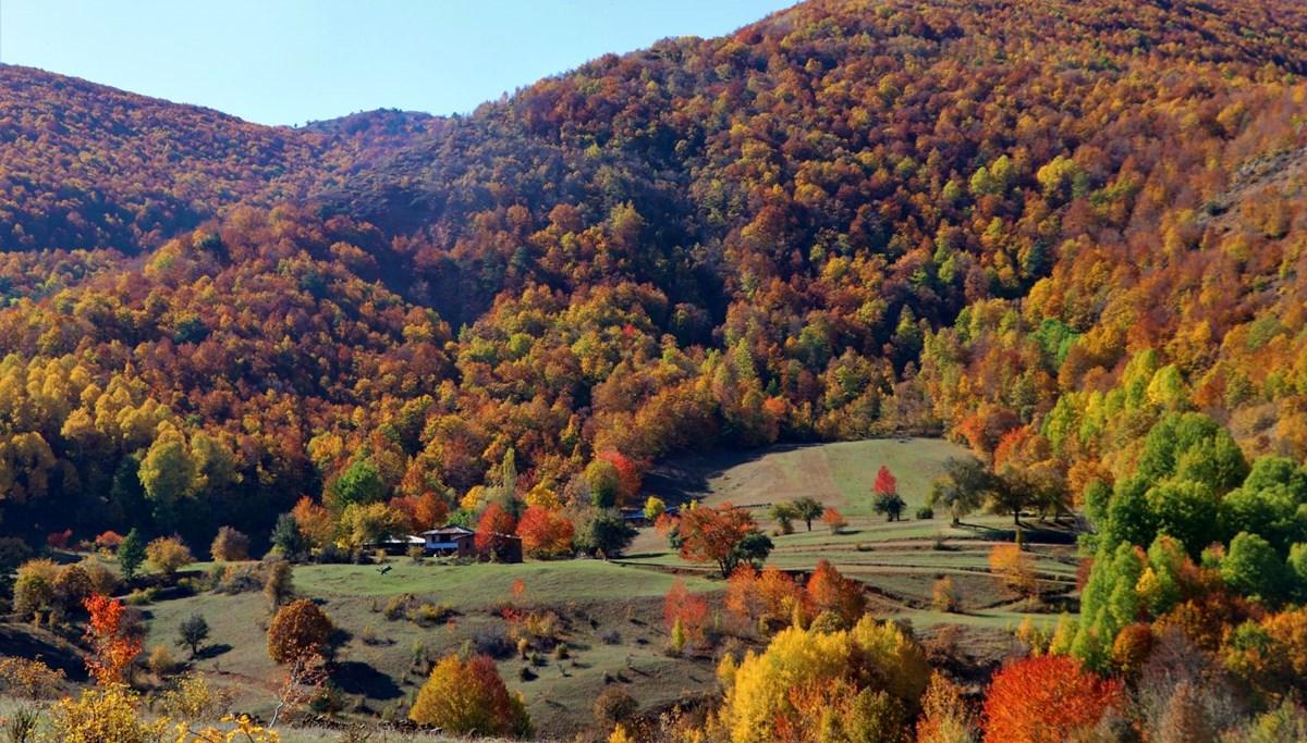 Dipsiz göl, sonbahar güzelliği ile mest ediyor