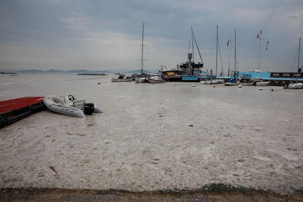 İstanbul'un sahilleri müsilajla doldu: 95 yıldır böyle bir şey görmedim - 17