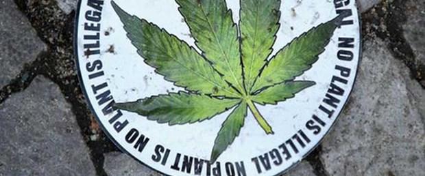abd-marihuana-142012