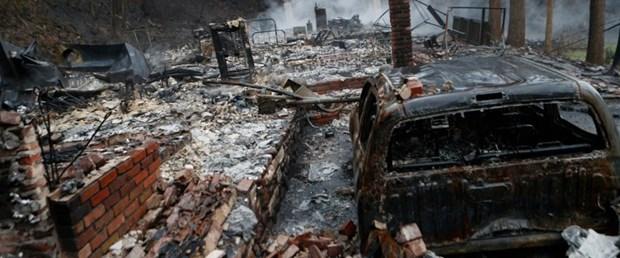abd orman yangın011216.jpg