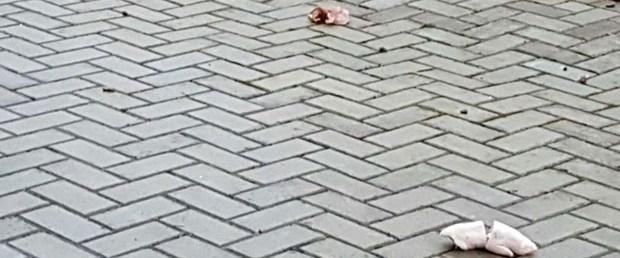 almanya cami domuz saldırı190317.jpg