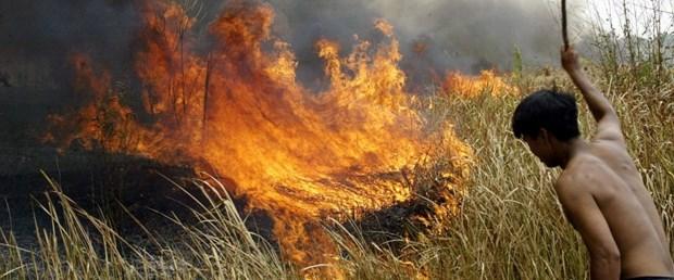 amazon orman yangın210819.jpg