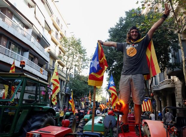 İspanya, Katalonya, Referandum, Bağımsızlık, Dünya, Öğrenci, Politika, Siyaset