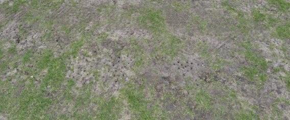 belçika futbol sahası patlatma310718.jpg