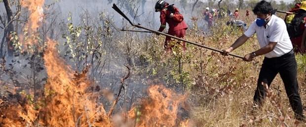 bolivya orman yangın071019.jpg