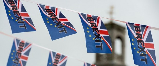 ab referandum ingiltere brexit140616.jpg