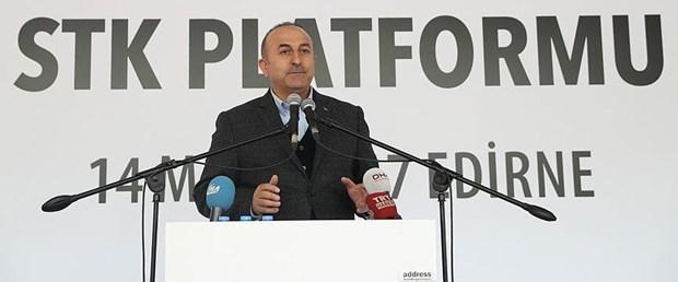 mevlüt çavuşoğlu vize serbestisi140317.jpg