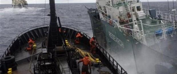 Deniz Çoban'ı balina gemisiyle çarpıştı