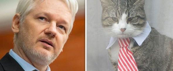 julian-assange-cat-732162.jpg