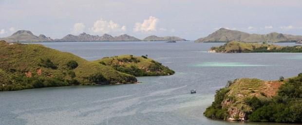 komodo adası.jpg