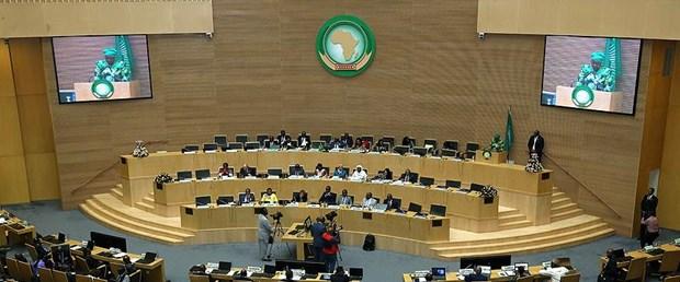 afrika-birliği.jpg