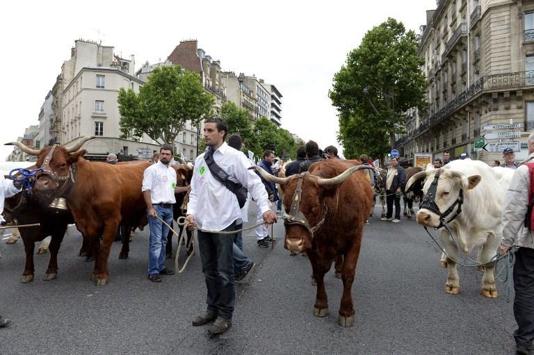 Hayvan yetiştiricileri Paris'te