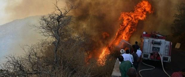 hindistan yangın120318.jpg