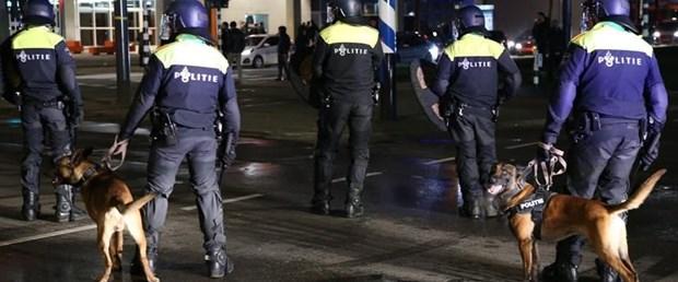hollanda polis.jpg