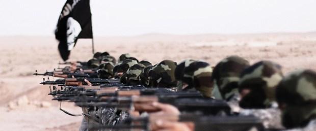 IŞİD-toprak-gelir110716.jpg