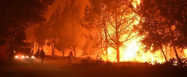 ABD'nin Kaliforniya eyaletinde 43 kişinin hayatını kaybettiği yangının 3.3 milya...