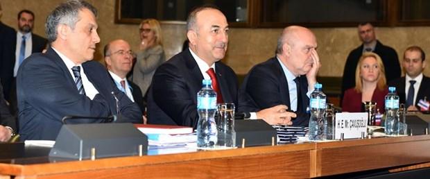 kıbrıs çavuşoğlu sinirlioğlu120117.jpg