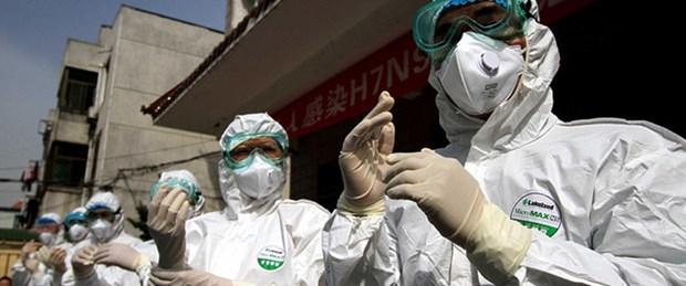 Kuş gribi Çin'de 31 can aldı