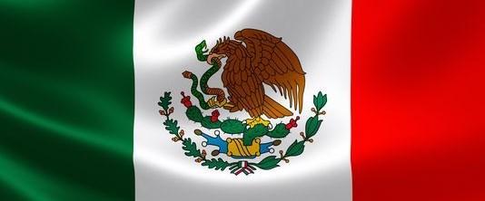 meksika gazeteci kaçırıldı200517.jpg