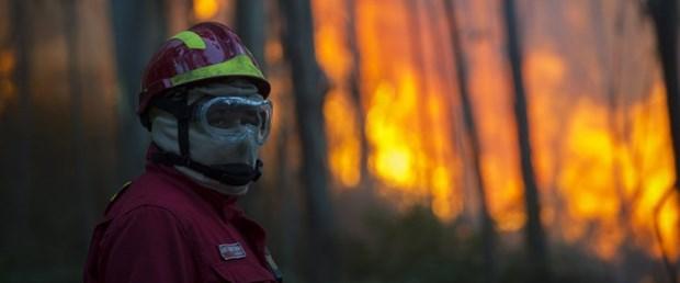 portekiz orman yangın090816.jpg