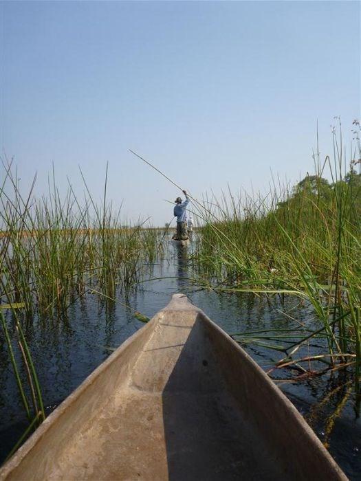 Okavango Deltası