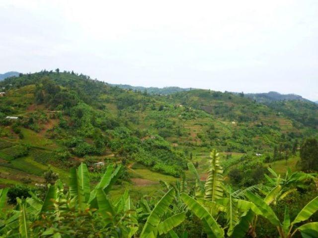 Ruanda tepeleri