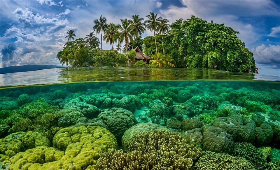 Solomon Adaları