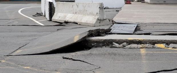 yeni zelanda deprem141116.jpg
