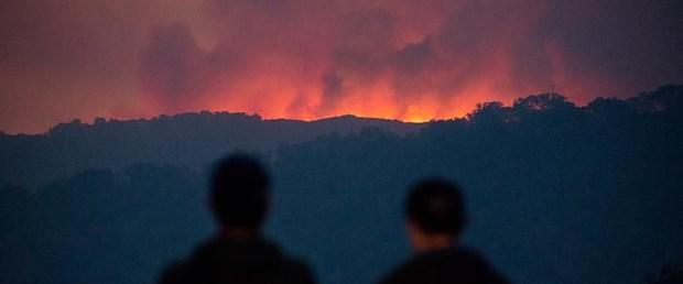 yeni-zelanda-yangın.jpg