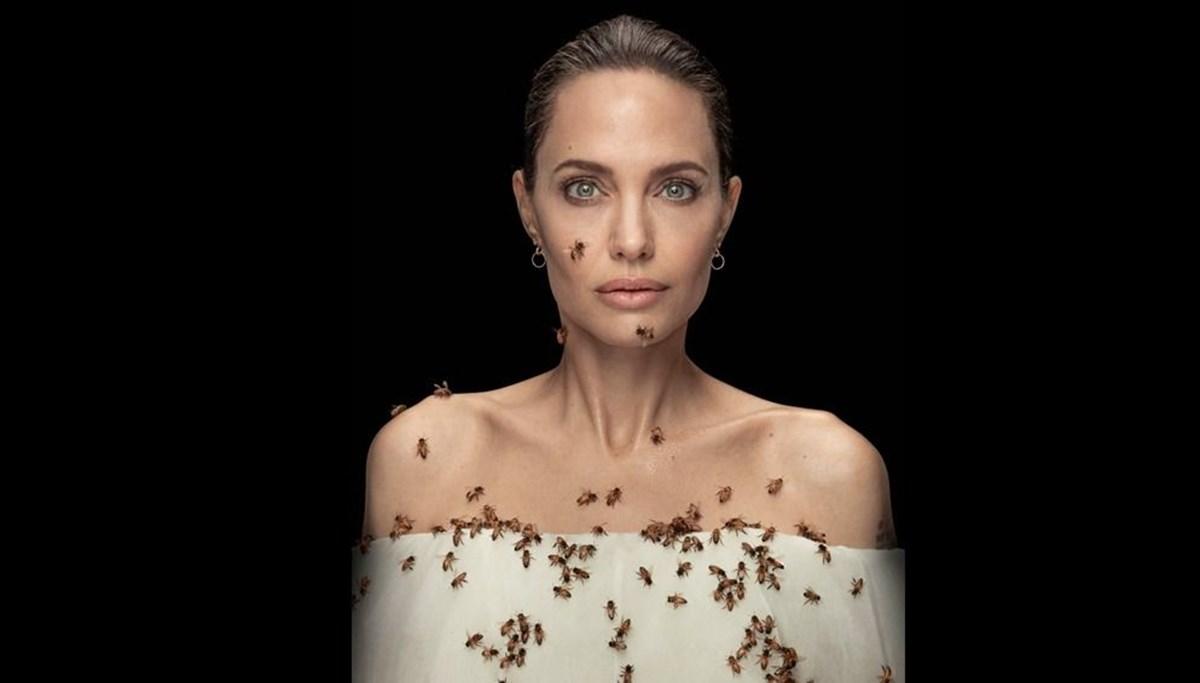 Angelina Jolie, arılar için arılarla objektif karşısında