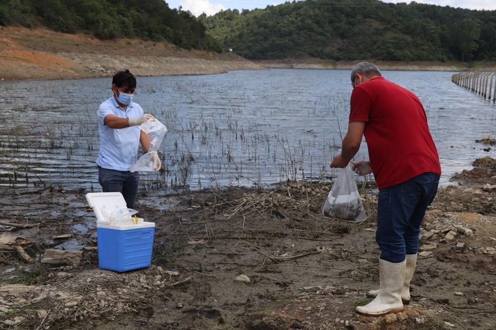 Alibeyköy Barajı'nda balık ölümleri: İnceleme başlatıldı - 12