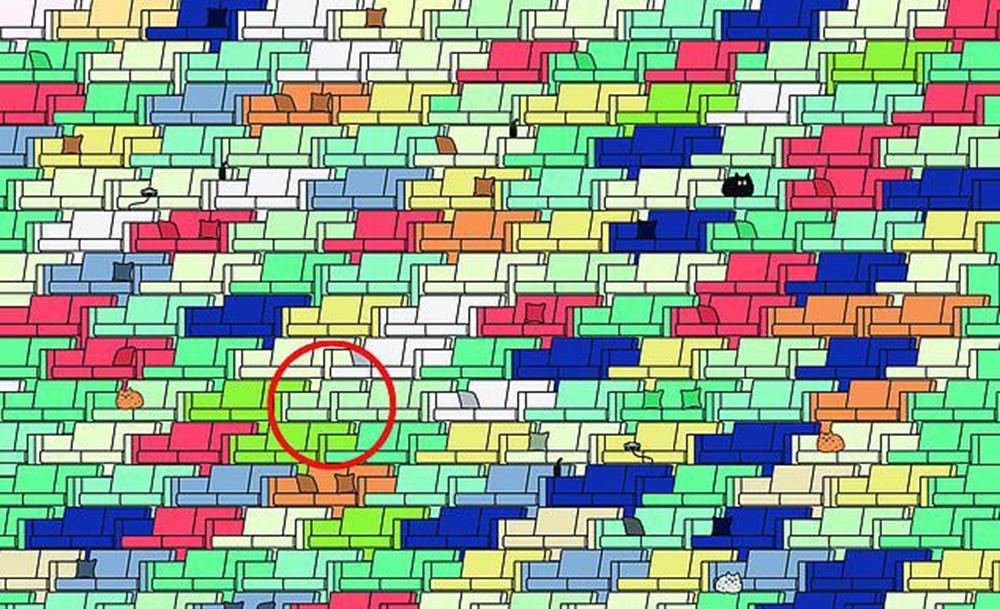 Dikkat testi: Resimdeki dört yapraklı yoncayı bulabilir misiniz? - 71