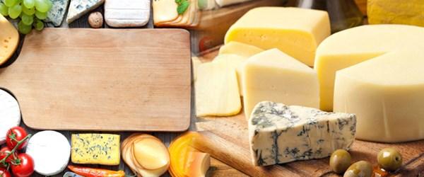 Hangi peynir ne zaman bozulur? (Çarşı Pazar Ekonomi)
