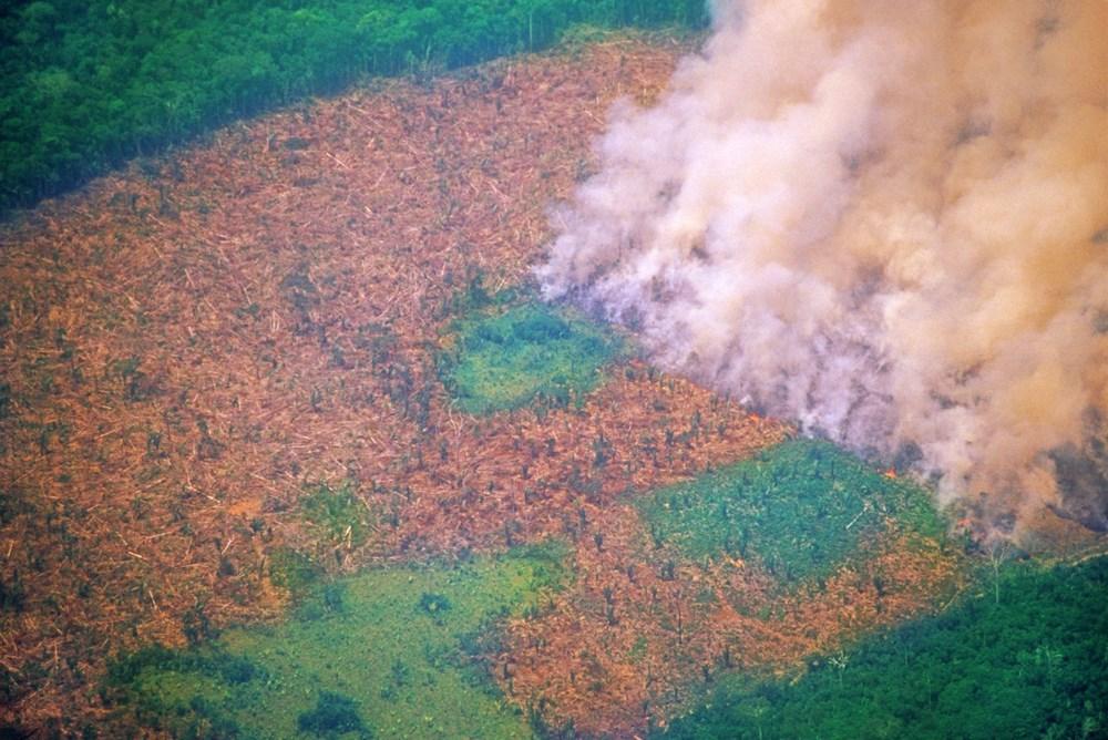 İklim değişikliği nedeniyle dünyanın dört bir yanında kırmızı alarm: Felaketler domino etkisiyle ilerliyor - 9
