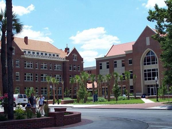 university of michigan admissions essays