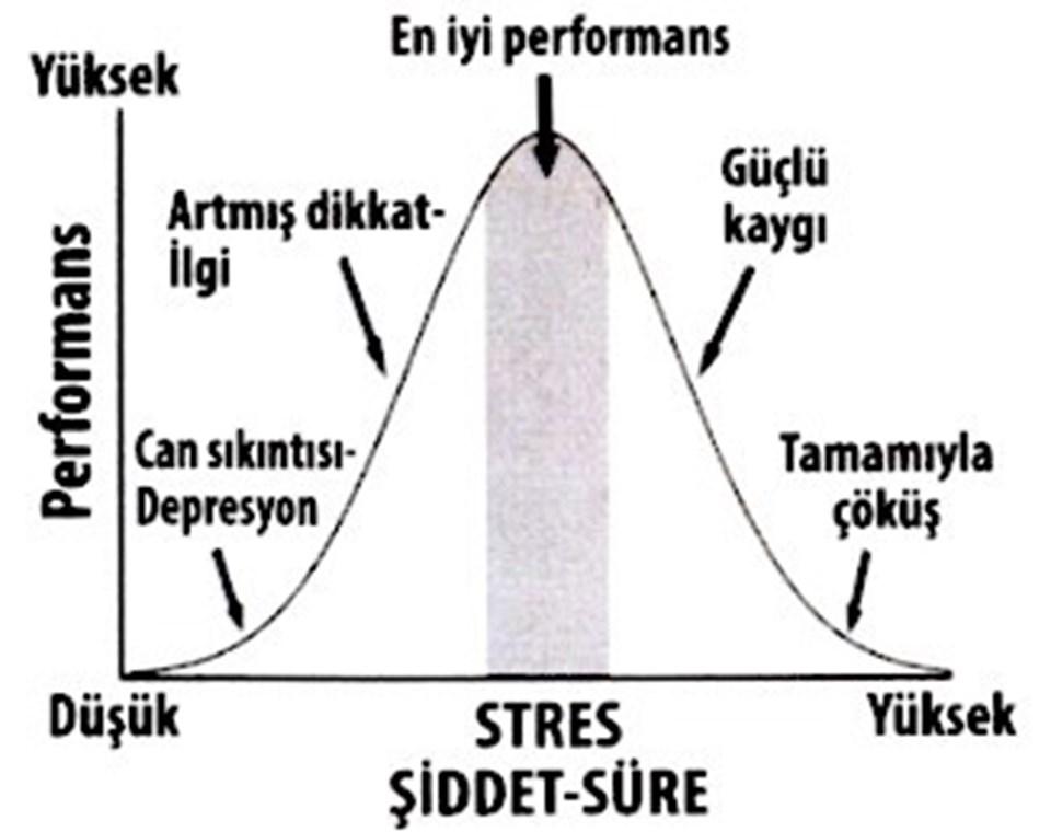 Kısa stres öğrenmeyi destekliyor