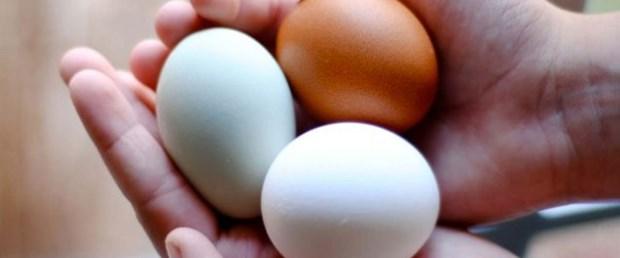 yumurta-yeni-dönem-kural201215.jpg