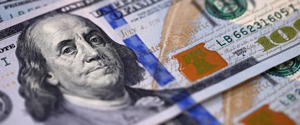 dolar113.jpg
