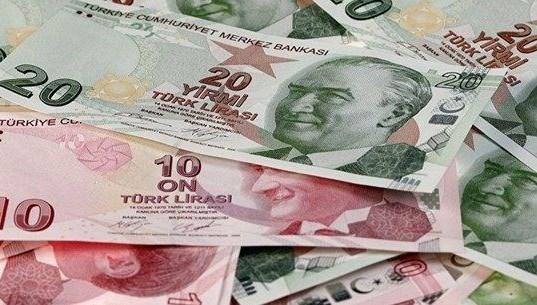 20 lira banknot.jpg